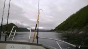Auf dem Fjord ...