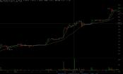 Bitcoin knackt die 1.000 Dollar Grenze. Quelle: Bitcoinwisdom.com