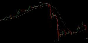 Und abwärts geht's: der Crash in den Charts von  Bitcoin Wisdom.