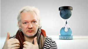 4,5 Jahre ohne Sonnenlicht in der Botschaft hinterlassen ihre Spuren. Julian Assange im Livevideo.